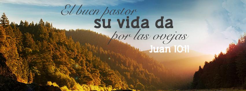El buen pastor - Juan 10:11: Yo soy el buen pastor; el buen pastor ...